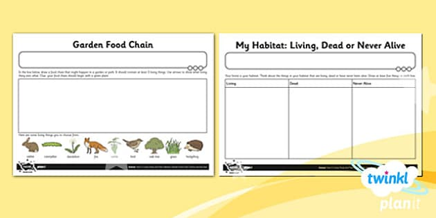 PlanIt - Science Year 2 - Living Things and Their Habitats Unit Home Learning Task - science, ks1, key stage 1, planning, resources, topic, nature, animals, places, homes, display, activities