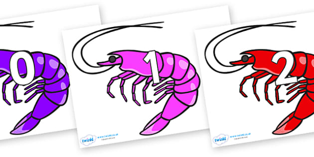 Numbers 0-31 on Shrimps - 0-31, foundation stage numeracy, Number recognition, Number flashcards, counting, number frieze, Display numbers, number posters