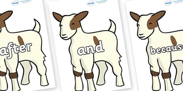 Connectives on Baby Goats - Connectives, VCOP, connective resources, connectives display words, connective displays