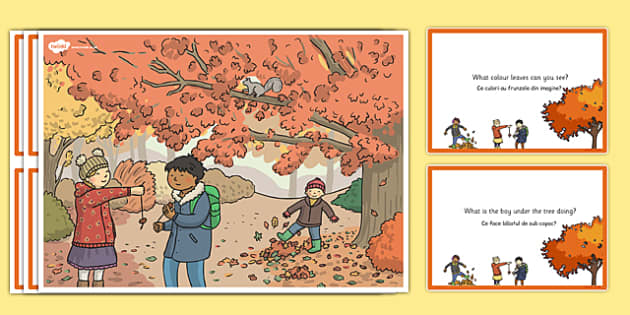 Autumn Woods Scene and Question Cards Romanian Translation - romanian, autumn, woods, scene, question, cards
