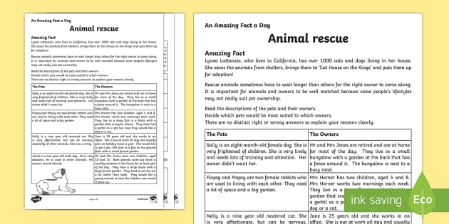 Animal Rescue Activity Sheet