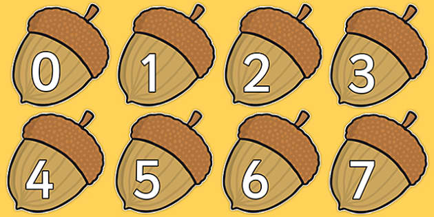 Numbers 0-30 on Acorns - Harvest, Acorn, Foundation Numeracy, Number recognition, Number flashcards, 0-30, A4, display, harvest,  harvest festival, fruit, apple, pear, orange, wheat, bread, grain, leaves, conker