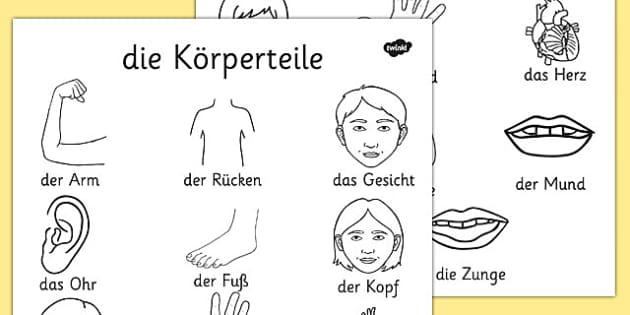 die Körperteile Dictionary Colouring Sheet German - german, my body, dictionary, colouring, sheet, colour