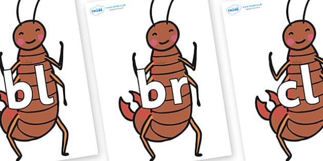 Initial Letter Blends on Earwigs - Initial Letters, initial letter, letter blend, letter blends, consonant, consonants, digraph, trigraph, literacy, alphabet, letters, foundation stage literacy