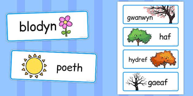 Cardiau Fflach 'Y Tymhorau' - welsh, season, word cards, cards, word