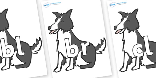 Initial Letter Blends on Sheep Dogs - Initial Letters, initial letter, letter blend, letter blends, consonant, consonants, digraph, trigraph, literacy, alphabet, letters, foundation stage literacy