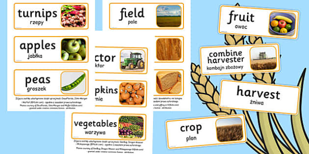 Harvest Topic Words Polish Translation - polish, harvest, topic, words, display
