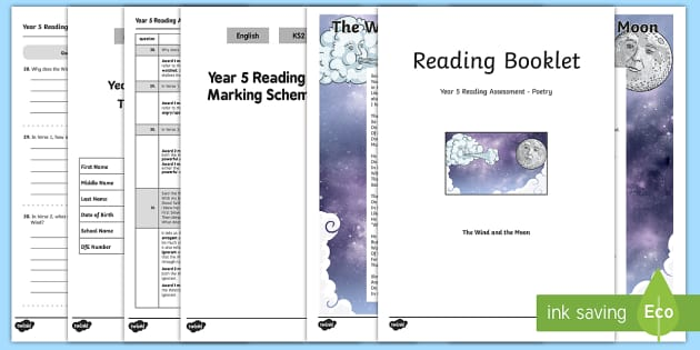 Year 5 Poetry Reading Assessment Term 3 - test, sats, summative, diagnostic, practice, ks2, comprehension, revision, boosters