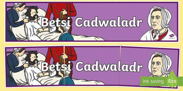 Betsi Cadwaladr Display Banner - Betsi Cadwaladr, Elizabeth 'Betsi' Cadwaladr, Nurse, History, Famous Welsh Faces. Welsh, Welsh Th