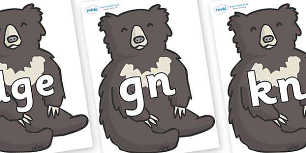Silent Letters on Bears - Silent Letters, silent letter, letter blend, consonant, consonants, digraph, trigraph, A-Z letters, literacy, alphabet, letters, alternative sounds