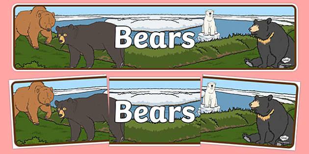 Bears Display Banner - Banner, bear, Display, Topic, Foundation stage, animals, polar bear, koala bear, brown bear, grizzly bear, sloth bear,  bear resources