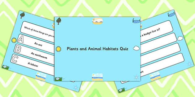 Plants and Animal Habitats PowerPoint Quiz - plants, animal, quiz