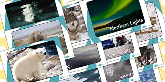 Arctic Display Photographs - arctic, display photos, photographs