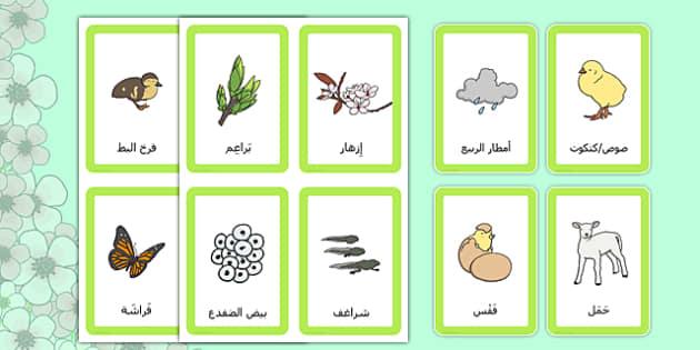 لعبة الربيع مطابقة البطاقات - وسائل تعليمية، موارد التعلم، الربيع