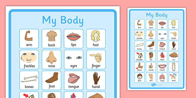 My Body Vocabulary Poster - my body, vocabulary poster, poster, my body vocabulary, display poster, information poster, poster for display, class display
