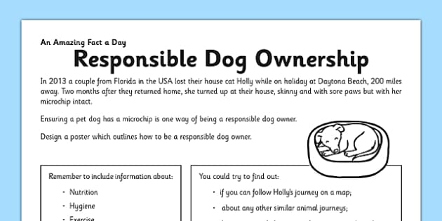 Responsible Dog Ownership Activity Sheet - pet, dog, responsible, worksheet
