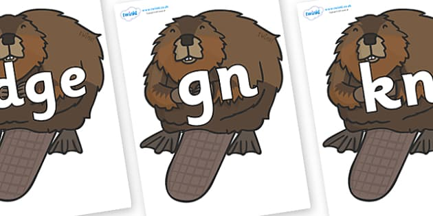 Silent Letters on Beavers - Silent Letters, silent letter, letter blend, consonant, consonants, digraph, trigraph, A-Z letters, literacy, alphabet, letters, alternative sounds