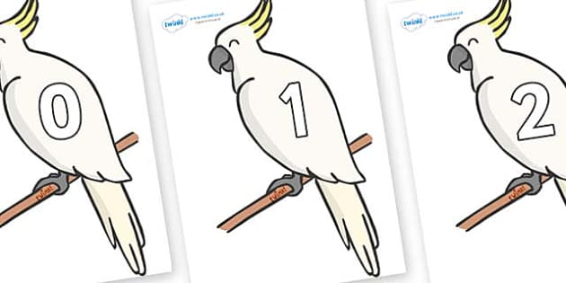 Numbers 0-100 on Cockatoos - 0-100, foundation stage numeracy, Number recognition, Number flashcards, counting, number frieze, Display numbers, number posters