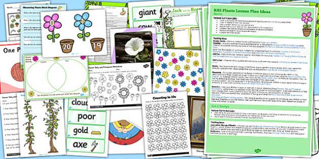 KS1 Plants Lesson Ideas and Resource Pack - resource pack, plants