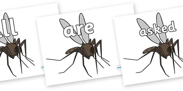 Tricky Words on Mosquitos - Tricky words, DfES Letters and Sounds, Letters and sounds, display, words