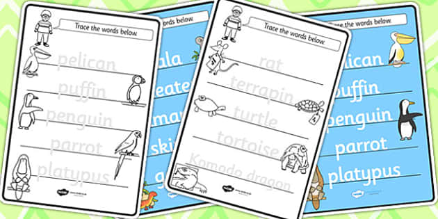 Trace the Words Worksheets to Support Teaching on The Great Pet Sale - pets, animals