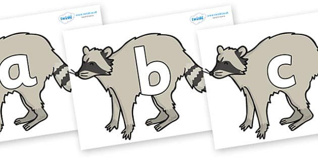Phoneme Set on Raccoons - Phoneme set, phonemes, phoneme, Letters and Sounds, DfES, display, Phase 1, Phase 2, Phase 3, Phase 5, Foundation, Literacy