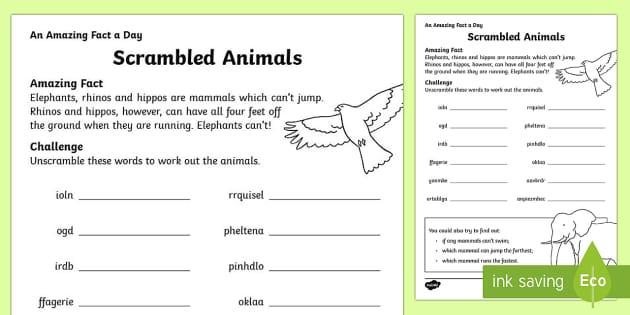 Scrambled Animals Activity Sheet