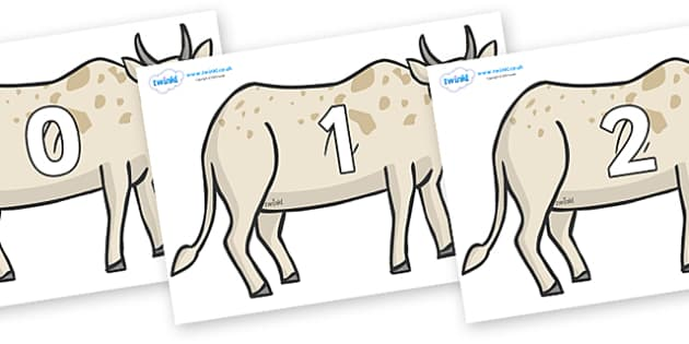 Numbers 0-50 on African Ox - 0-50, foundation stage numeracy, Number recognition, Number flashcards, counting, number frieze, Display numbers, number posters