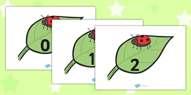 Numbers 0-30 on Ladybirds - numbers, 30, ladybirds, minibeasts