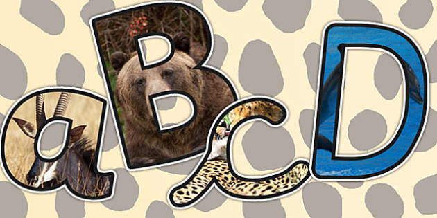 Animals Themed A4 Photo Display Lettering - animals, lettering