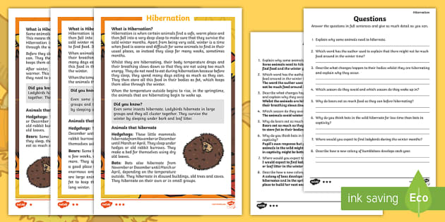 Hibernation Differentiated Reading Comprehension Activity - KS1, hibernation, animals, winter, seasons, reading, comprehension