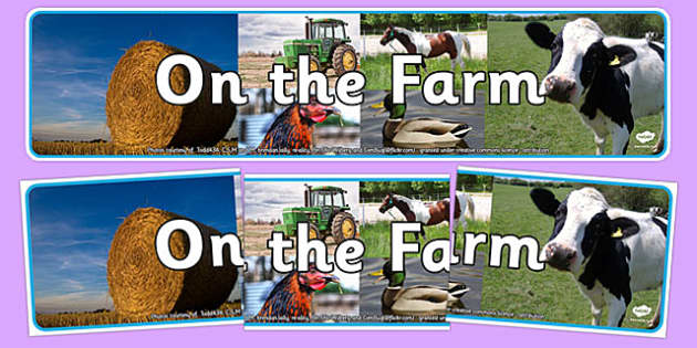 On the Farm Photo Display Banner - on the farm, photo display banner, photo banner, display banner, banner,  banner for display, display photo, display
