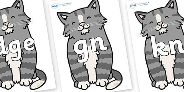 Silent Letters on Kittens - Silent Letters, silent letter, letter blend, consonant, consonants, digraph, trigraph, A-Z letters, literacy, alphabet, letters, alternative sounds