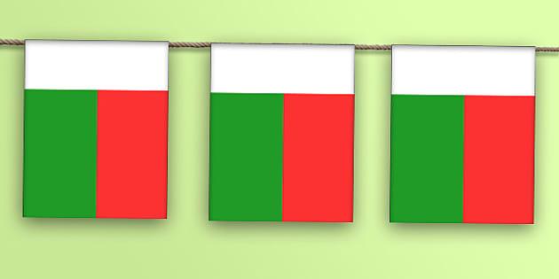Madagascar Flag Bunting - madagascar flag, madagascar, flag, display bunting, display, bunting