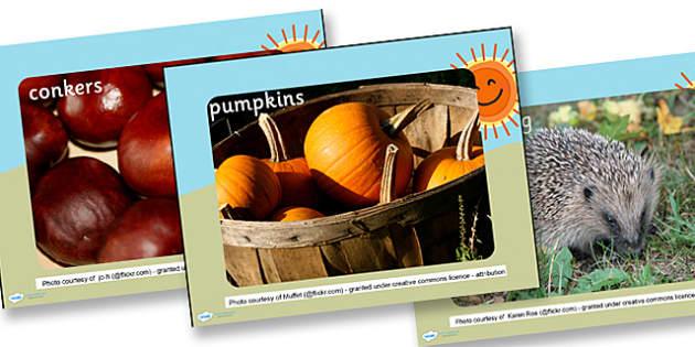 Autumn Display Photo PowerPoint - powerpoint, photo powerpoint, autumn photo powerpoint, display photo, photo, display, discussion starters, autumn photo