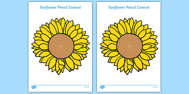 Sunflower-Themed Pencil Control Sheets - fine motor skills, fine motor, sunflower, pencil control, plants, growing, flowers, growth, mark-making, handwriting
