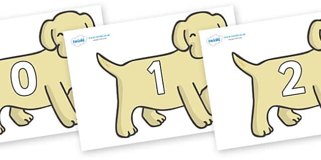 Numbers 0-31 on Puppies - 0-31, foundation stage numeracy, Number recognition, Number flashcards, counting, number frieze, Display numbers, number posters