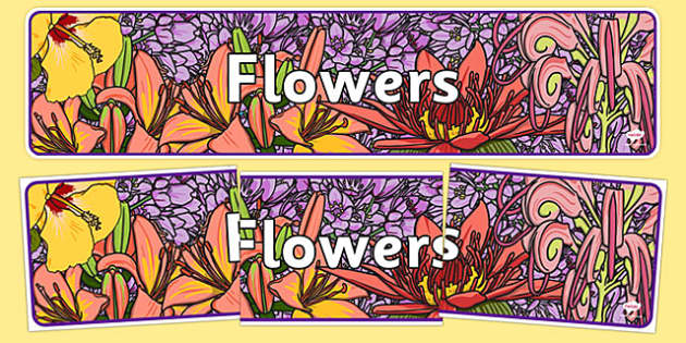 Flowers IPC Display Banner - plants, flower, header, display