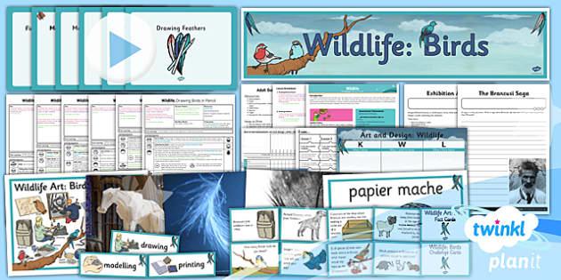 PlanIt - Art UKS2 - Wildlife Unit Pack
