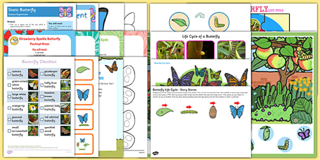 Childminder Butterfly Life Cycle Resource Pack - EYFS, Caterpillar, butterfly, cocoon, chrysalis