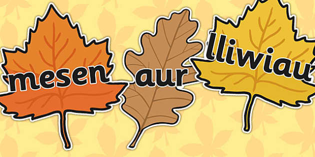 Autumn Topic Words On Leaves Welsh Translation - seasons, wales