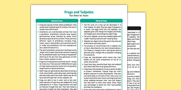 Frogs and Tadpoles Fact Sheet for Adults - EYFS, Early Years, KS1, Key Stage 1, frog, tadpole, life cycle, living things, Science, Understanding the World