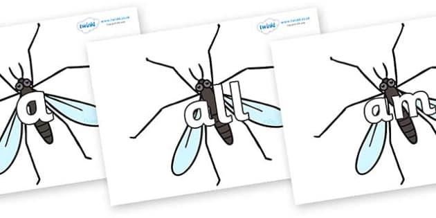 Foundation Stage 2 Keywords on Crane Flies - FS2, CLL, keywords, Communication language and literacy,  Display, Key words, high frequency words, foundation stage literacy, DfES Letters and Sounds, Letters and Sounds, spelling