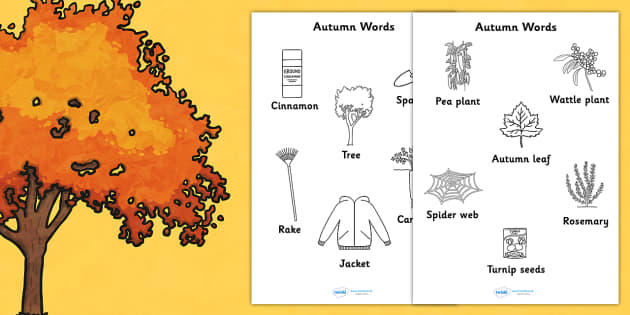 Autumn Words Colouring Sheet - colour, colour in, motor skills