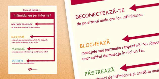 Plansa, Cum sa lidezi cu intimidarea pe internet - cyberbullying