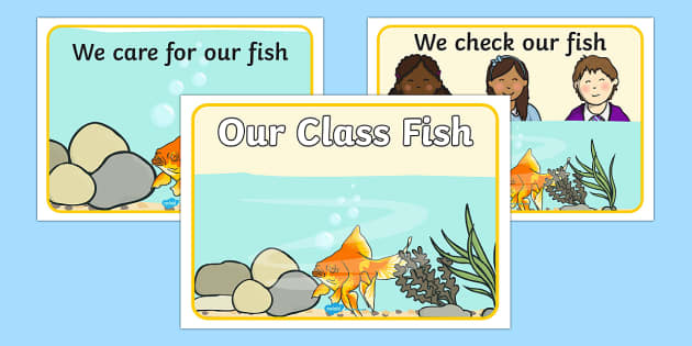 Our Class Fish Display Posters - our class fish, display posters, posters, posters for display, classroom display, information posters, our class pet