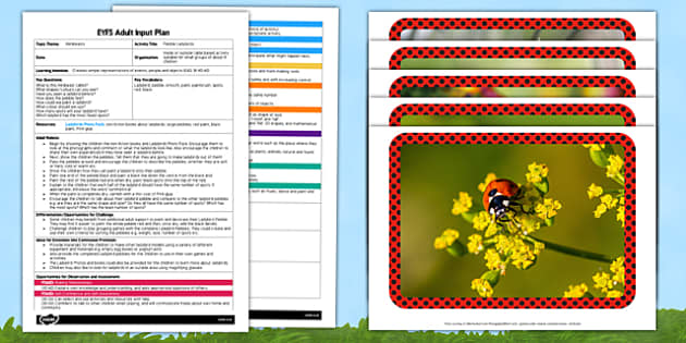 Pebble Ladybirds EYFS Adult Input Plan and Resource Pack - minibeasts, plans