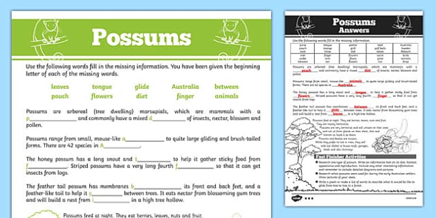 Australian Animals Years 3-6 Possums Differentiated Cloze Passage Activity Sheet - australia, Australian Curriculum, animals, marsupials, possum, differentiated, cloze, fast finisher, information, reading, worksheet