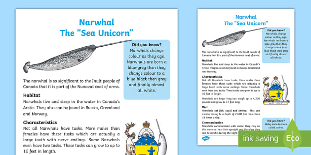 Narwhal Fact File - Canadian First Nations, Canada, Arctic Waters, Science and Technology.