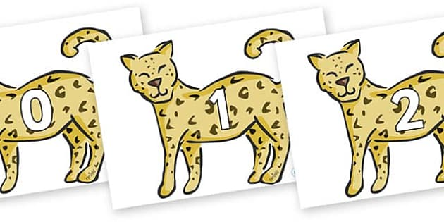 Numbers 0-31 on Leopards - 0-31, foundation stage numeracy, Number recognition, Number flashcards, counting, number frieze, Display numbers, number posters